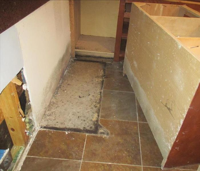 Mold Remediation in Mission, Texas. Before