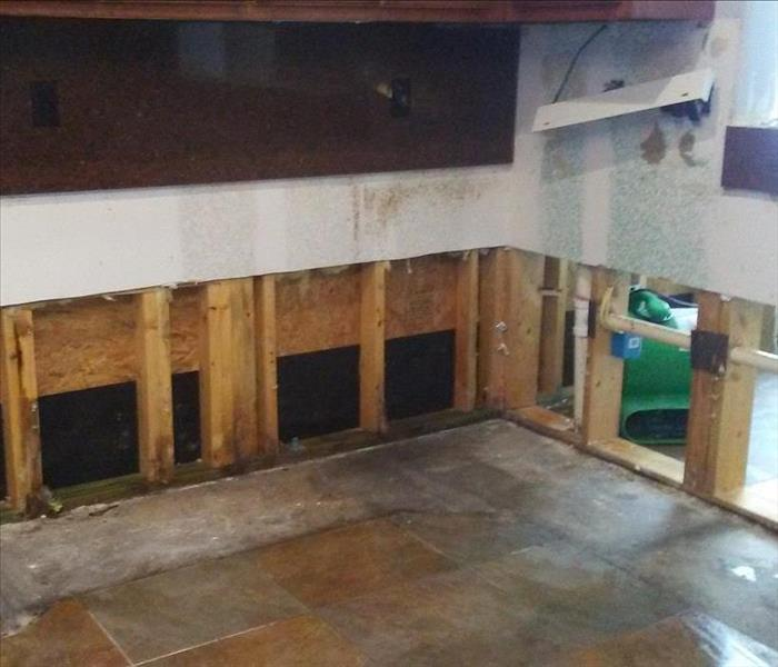 Mold Remediation in Mission, Texas. After