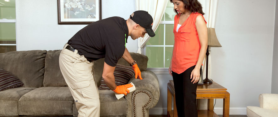 McAllen, TX carpet upholstery cleaning